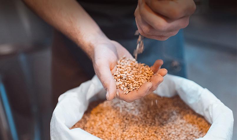 ble sud ouest produits du terroir production française fabrication pâtes