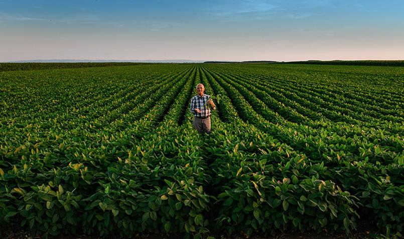 Producteurs agriculture raisonnée respectueuse de l'environnement produits du terroir production française